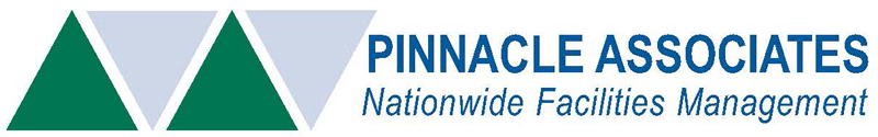 Pinnacle Associates Logo